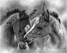 Tender Moment by Glynnis Miller Pencil ~ 16 x 20