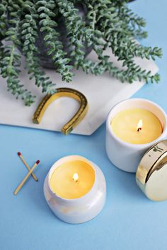 Make Your Own Beeswax Candles!