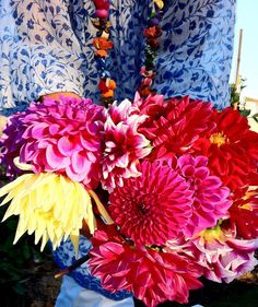 absolutely beautiful things: Flowers