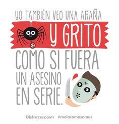Yo también veo una araña y grito como si fuera un asesino en serie. www.disfrazzes.com ❤ #MolaComoSomos