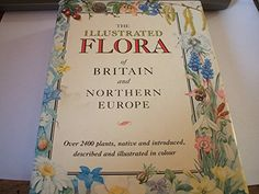 The Illustrated Flora of Britain and Northern Europe (Teach Yourself): Marjorie Blamey, Christopher Grey Wilson, C. Grey-Wilson: 9780340401705: Amazon.com: Books