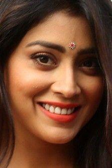 South Indian Actress Hot, South Actress, Indian Jewellery Design, Indian Jewelry, Shreya Saran Hot, Beautiful Bride, Beautiful Women, Bollywood Designer Sarees, Indian Ethnic