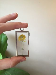 Wild Mustard Botanical Necklace Pressed by GlassHouseCollection