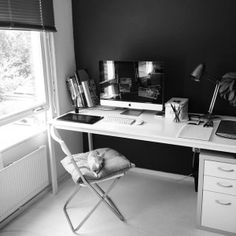 The Workspace and The Chihuahua