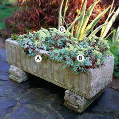 Container garden idea