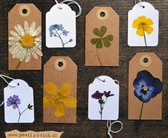 DIY dried flower gift tags. Tutorial in Dutch by Postfabriek. If you don't understand Dutch use Google Translate.
