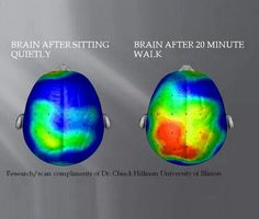 Walking is good for your brain