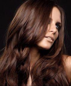classic chocolate brown hair