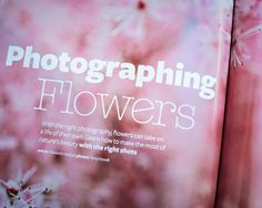 Want some tips for photographing flowers this spring? http://www.elizabethhalford.com/photography-tutorials/photographing/how-to-photograph-flowers-making-portraits-not-taking-pictures/