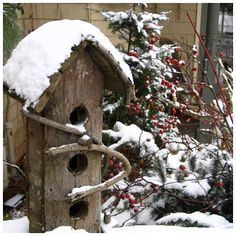 Nice shelter for the birds