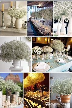 Baby's breath centre pieces in white different shaped vases or milk jugs