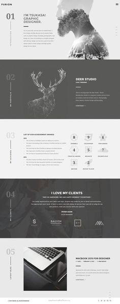 Furion - WordPress Theme for creative blogs & portfolios. Minimalist and monochrome.