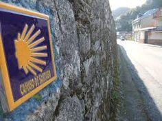 camino de santiago - concha