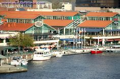 The Jacksonville Landing has restaurants, shops, concerts, and many more! Located downtown.
