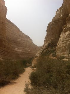 Ein Adat - is a canyon in the Negev desert of Israel, was inhabitet by Nabatian and Catholic monks, when you staying down and watching up, you fill the power of creation