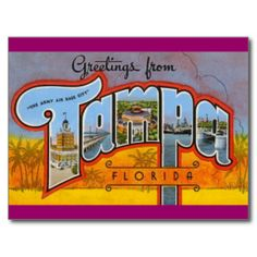 =>Sale on          Greetings from Tampa, Florida Post Cards           Greetings from Tampa, Florida Post Cards we are given they also recommend where is the best to buyShopping          Greetings from Tampa, Florida Post Cards today easy to Shops & Purchase Online - transferred directly sec...Cleck Hot Deals >>> http://www.zazzle.com/greetings_from_tampa_florida_post_cards-239893882667721545?rf=238627982471231924&zbar=1&tc=terrest