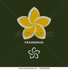 frangipani flower logo vector - stock vector