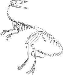 preschool dinosaur pattern - Google 검색