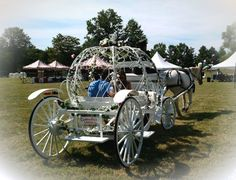At an event in Hightstown NJ our Cinderella Carriage pulled by our big white horse give rides in a meadow.
