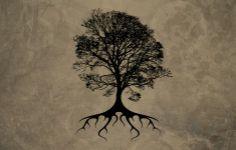 Tree Vector Wallpaper 1920×1200