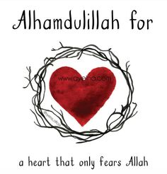 140: Alhamdulillah for a heart that only fears Allah. #AlhamdulillahForSeries