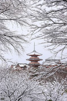Kiyomizu temple in snow, Kyoto, Japan