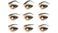 BLOG-Gorgeous-Eyebrows-through-Thick-and-Thin-800x450.jpg (800×450)