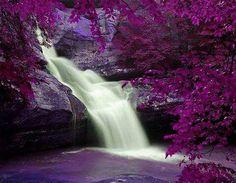 Waterfalls purple image by CarrieDoll on Photobucket (purple,waterfall,photography,creative,nature) Beautiful World, Beautiful Places, Beautiful Pictures, Dream Images, Beautiful Flowers, Beautiful Waterfalls, Beautiful Landscapes, All Nature, Belleza Natural