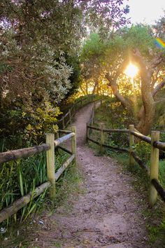 26 Best ideas for nature landscape photography beautiful places Pathways, Garden Paths, Belle Photo, Beautiful Landscapes, The Great Outdoors, Nature Photography, Landscape Photography, Beautiful Places, Beautiful Scenery Pictures