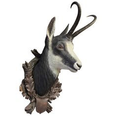 Carved Black Forest Chamois Head | From a unique collection of antique and modern wall-mounted sculptures at https://www.1stdibs.com/furniture/wall-decorations/wall-mounted-sculptures/