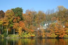 Lake Geneva, Wisconsin and the beautiful fall colors. The leaves are changing.