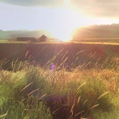 .@Cottage Arts | Our piece of paradise in paradise valley, montana...