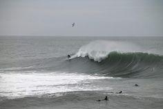 Santa Cruz CA: Great day in Santa Cruz Middle Peak doing it's thing.  #waterbasedshenanigans #middlepeak #steamerlane #surfing #elnino by tdouble_ld
