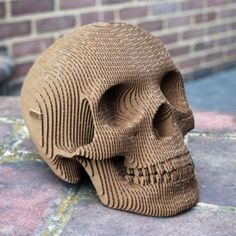 Vegan Human Skull - assemblage: a cardboard puzzle of more than 80 pieces that when assembled form a life-size human skull replica!
