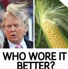 The 23 BEST Donald Trump Memes Online That'll Make You Laugh Bigly!