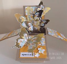 "Made Using Craftwork Cards USB "" A Pocketful of Papers"" Pop up Box Card Butterflies"