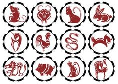 illustration of Chinese zodiac signs , Chinese Zodiac Signs, Vector Pattern, Background Patterns, Feng Shui, Illustration, Photos, Detox, Backgrounds, Lighting