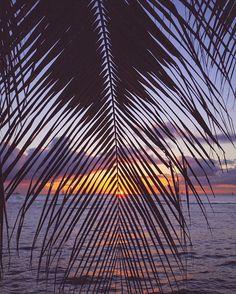 ≫ FULL M🌕🌕N in ♍️ TONIGHT ≪ Breath in peace >< Breath out stress  Good night world 😴 Sweet dreams 💤  #FullMoon #ハワイ #ノースショア