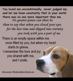 Loss of a pet quote ♡