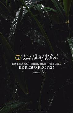 Quran Verses, Quran Quotes, Hindi Quotes, Quran Sayings, Islamic Quotes In English, English Quotes, Alhamdulillah, Hadith, Muslim Quotes