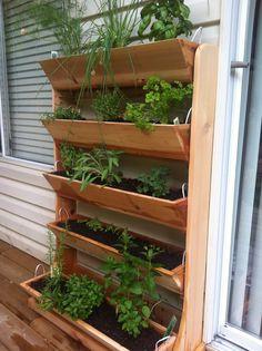 Back deck herb garden
