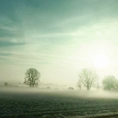#HighVoltagePix.com #OnMyWay #AmazingNature #LoveMyJob #Freedom #Love #Remember #LoveYourLife #beStraight #MunichLove #münchen #motd #potd #Munich #Photography #Instaphoto #photooftheday #Photographer #pictureoftheday #landscape #artwork #neverforget #MizzVanMunichPhotography #ImpressionsByNature #Winter #WinterWonderland #Snow