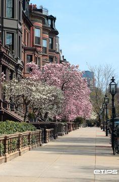 Always loved Boston Streets...