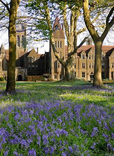 Charterhouse School, Surrey, UK. English public (private) school founded by Thomas Sutton  in 1611. Originally The Hospital of King James and Thomas Sutton. Pupils today are still referred to as Old Carthusians