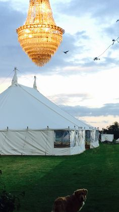 This chandelier looks incredible when next to this traditional canvas vintage style marquee