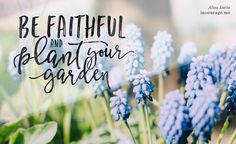 I'm learning that faithfulness can look like planting your bulbs, dusting your hands, offering a little water each day, and waiting, trusting that God is forming something deep within you. // @alizalatta  at incourage.me