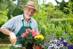 Therapeutic Activities for Seniors: Gardening