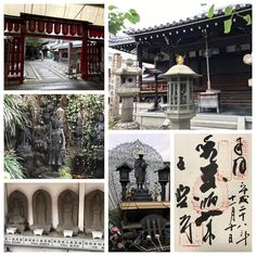 全興寺(大阪) その1  お寺なのですが、ちょっとしたテーマパークのような感じ(その辺はその2以降で)です  商店街側の入口から入ってすぐ正面に一願不動尊(写真左中)、両脇の壁に西国三十三観音が並んでいました(写真左下)  この寺自体は摂津国八十八ヶ所とおおさか十三仏の霊場で、いつもは、御朱印の右上の判子だけが違うだけと言われても、別々にいただいています  ここでも同じようにいただこうと申し出たのですが、お寺の方がどうせ判子が違うだけやから、並べて押すからそうしとき…と一つに 大阪っぽいなぁといえば大阪っぽい…とはいえ、自分は大阪人ですが、こんな御朱印は初めてですf^_^; そんなわけで右上の霊場の判子が2つ押されています #御朱印 #御朱印集め #全興寺 #お寺 #大阪 #平野 #摂津国八十八ヶ所  #おおさか十三仏霊場 #西国三十三観音 #一願不動尊