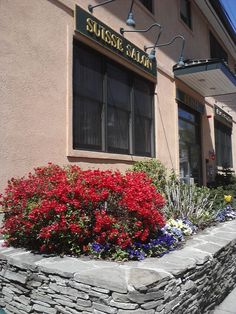 Spring is in the hair at Suisse! Flowers are blooming and the sun is shining away! Natural Hair Salons, Natural Hair Styles, Bloom, Sun, Spring, Nature, Flowers, Naturaleza, Flower