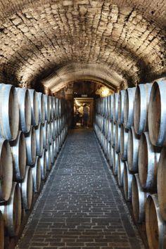The cellars of Villa Sandi at Crocetta del Montello (Treviso) Prosecco, Villa, Tours, Italy, Wine, Italia, Villas